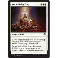 Arrow Volley Trap
