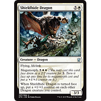 Shieldhide Dragon