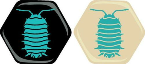 Hive: The Pillbug (Pocket version)_boxshot