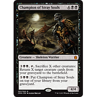 Champion of Stray Souls