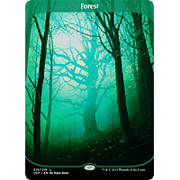 Forest ( Full art ) (Foil)