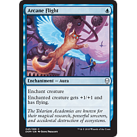Arcane Flight