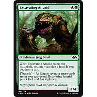 Excavating Anurid