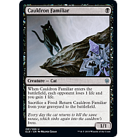 Cauldron Familiar
